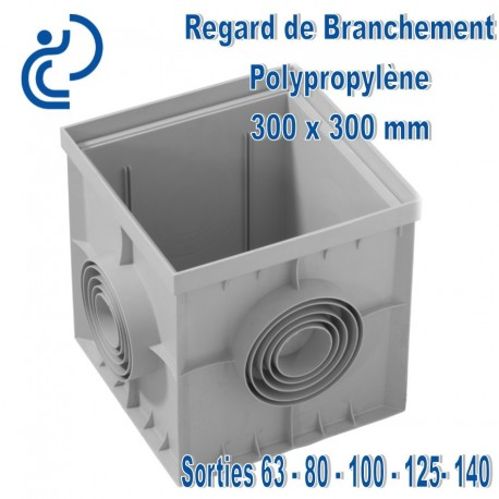 REGARD DE BRANCHEMENT PP 30 x 30