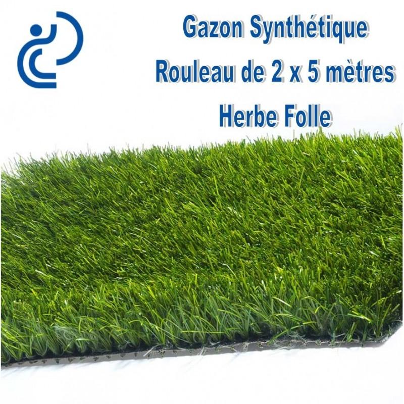 gazon synth tique herbe folle rouleau de 2mx5m. Black Bedroom Furniture Sets. Home Design Ideas