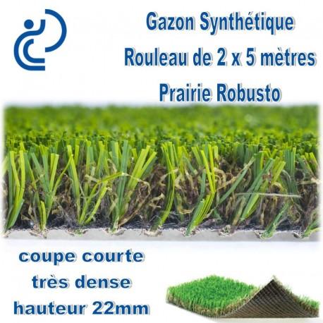 """Gazon Synthétique """"PRAIRIE ROBUSTO"""" rouleau de 2mx5m"""