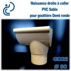 NAISSANCE DROITE A COLLER EN PVC SABLE POUR GD25