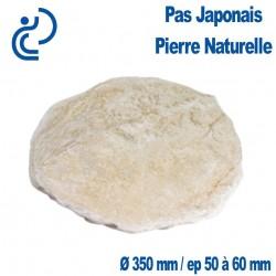 Pas Japonais en Pierre Naturelle