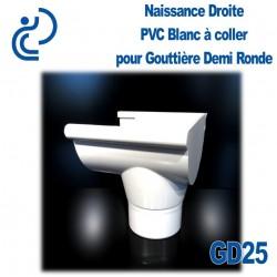 NAISSANCE DROITE A COLLER EN PVC BLANC POUR GD25