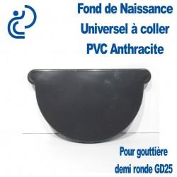 FOND DE NAISSANCE UNIVERSEL ANTHRACITE EN PVC