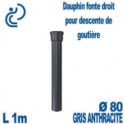 Dauphin Fonte Droit Ø80 finition Anthracite longueur 1 mètre