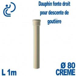 Dauphin Fonte Droit Ø80 finition Crème longueur 1 mètre