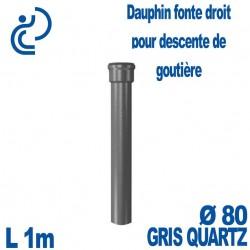 Dauphin Fonte Droit Ø80 finition Gris longueur 1 mètre