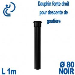 Dauphin Fonte Droit Ø80 finition Noir longueur 1 mètre