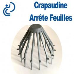 CRAPAUDINE ARRETE FEUILLES 80/100