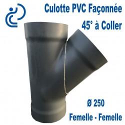 CULOTTE PVC 45° FF D250 Me