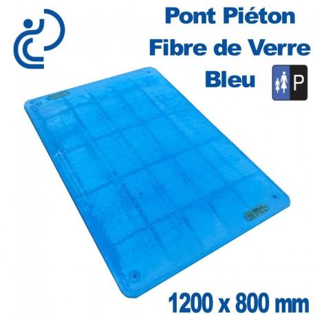 Pont Piéton Fibre de Verre Bleu 1200X800
