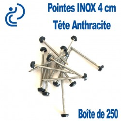 POINTES INOX 4CM TETE ANTHRACITE (boîte de 250)