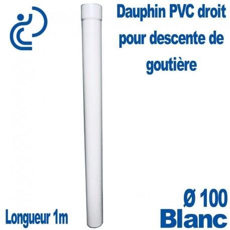 Dauphin PVC Droit Blanc D100 1ml
