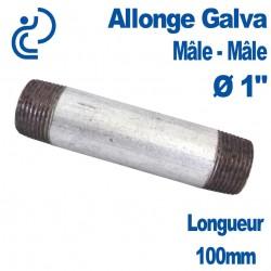 "ALLONGE GALVA Ø1"" longueur 100mm Mâle-Mâle"