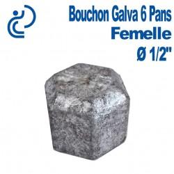 "Bouchon Galva 6 PANS Femelle 1/2"""
