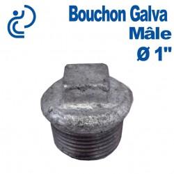 """Bouchon Galva Mâle 1"""""""