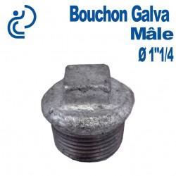 """Bouchon Galva Mâle 1""""1/4"""