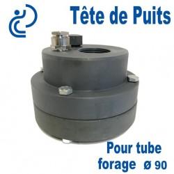 Tête de Puits en PVC Ø90 pour Pompe de Forage Immergée