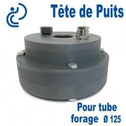 Tête de Puits en PVC Ø125 pour Pompe de Forage Immergée