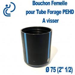 "Bouchon taraudé Femelle pour Tube forage PEHD Ø75 (2"" 1/2)"