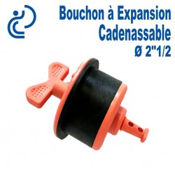 """Bouchon à Expansion Cadenassable 2""""1/2"""