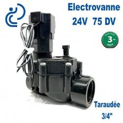 """ELECTROVANNE 24V 3/4"""" F 75DV"""