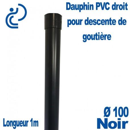 Dauphin Fonte Droit Ø100 finition Noir longueur 1 mètre