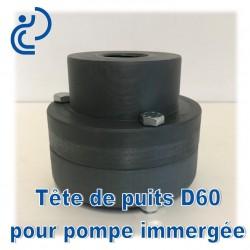 Tête de Puits en PVC pour Pompe Immergée D60