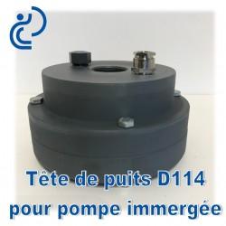 Tête de Puits en PVC pour Pompe Immergée D114