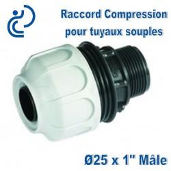 "RACCORD BDFAST A COMPRESSION 25x1"" mâle"