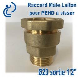"Raccord Mâle Laiton D20 sortie 1/2"" Pour tube PEHD"