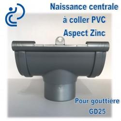 NAISSANCE CENTRALE A COLLER EN PVC ASPECT ZINC