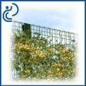Clôtures Végétalisables